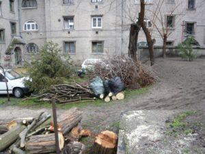 Kertépítés, tereprendezés kézi erővel, fakivágás